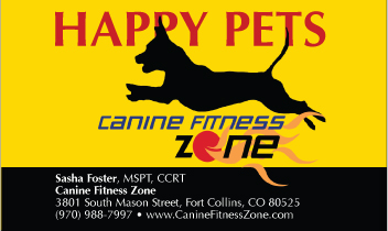 Bright yellow background on business card design, black dog jumping, with headline Happy Pets behind.
